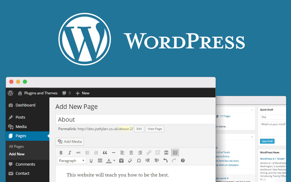 30% of the websites run WordPress